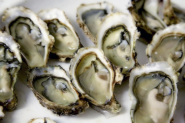 image of Don't Miss the Delicious DC Oyster Festival